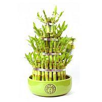 Glückspyramide aus Bambus